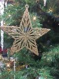 L'étoile toujours durable Photos libres de droits
