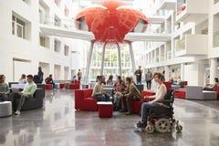 L'étudiant dans le fauteuil roulant et les collègues à l'université incitent Images libres de droits
