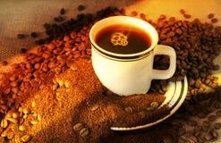 L'évolution du café Photographie stock libre de droits