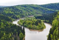L'île de forêt Images stock