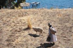 L'île de la lune est située sur le Lac Titicaca Photos stock
