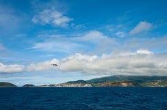 L'île Faial Image libre de droits