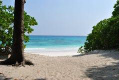 L'île Tachai, plage Photo libre de droits
