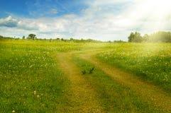 L зеленеет поле и дорогу на траве Стоковая Фотография RF