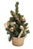 L рождественская елка на белой предпосылке Стоковая Фотография RF