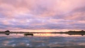 λιβάδι εσωτερική Μογγο&l Στοκ φωτογραφίες με δικαίωμα ελεύθερης χρήσης