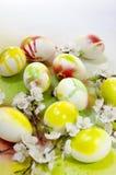 L'aérosol de peinture d'oeuf de pâques fleurit l'abricot Photos libres de droits
