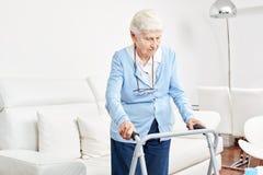 L'aîné en tant que patient présentant l'handicap apprend à marcher Image libre de droits