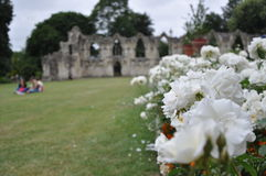 L'abbaye de St Mary, York, Royaume-Uni Photo stock