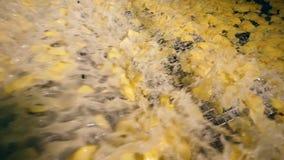 L'abbondanza delle patatine fritte sta ottenendo fritta in olio d'ebollizione video d archivio