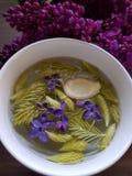 L'abete rosso lilla dello zenzero spara il tè Fotografia Stock