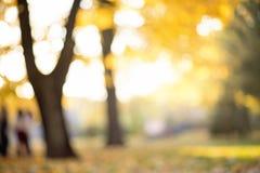 L'abrégé sur automne a brouillé le fond avec les lumières magiques Image stock