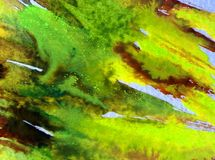 L'abrégé sur fond d'art d'aquarelle frotte l'imagination brouillée texturisée de lavage humide de vert jaune Photo libre de droits