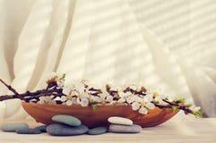 L'abricot de floraison s'embranchent dans un château en bois et des pierres de mer sur un fond clair Photographie stock libre de droits