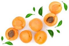 L'abricot porte des fruits avec des feuilles d'isolement sur le fond blanc avec l'espace de copie pour votre texte Vue supérieure photos libres de droits
