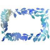 L'acacia laisse le cadre dans un style d'aquarelle Photo libre de droits