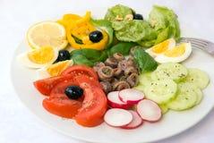 L'acciuga delle specialità gastronomiche si è mescolata - Immagine Stock Libera da Diritti