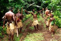 L'accueil du chef - Vanuatu Images libres de droits