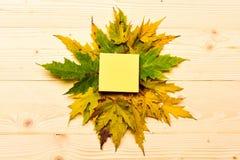 L'acero ha asciugato la foglia sul fondo di legno della luce naturale Le foglie cadute autunno si sono raccolte intorno alla nota fotografia stock libera da diritti
