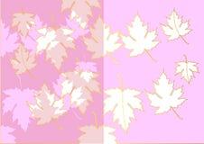 L'acero ha tagliato da colore e dall'oro di rosa della carta dello stampino su fondo bianco, illustrazione di vettore Fotografia Stock