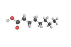 L'acido ottanoico, ha trovato naturalmente nel latte di vari mammiferi, fotografie stock libere da diritti