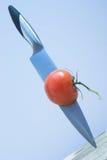 L'acier bleu contacte la tomate rouge Image stock