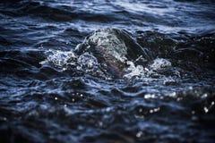 L'acqua è la fonte di vita e di deathnull Immagini Stock Libere da Diritti