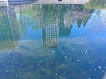L'acqua è uno specchio che collega il mondo dell'acqua con il mondo subacqueo fotografie stock libere da diritti