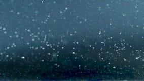 L'acqua bolle acquario grigio del fondo video d archivio