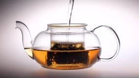 L'acqua bollente è versata nella teiera di vetro con le foglie di tè video d archivio