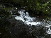L'acqua cade al parco Fotografia Stock Libera da Diritti
