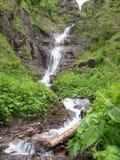 L'acqua cade da un'alta scogliera Fotografie Stock