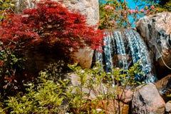 L'acqua cade passando da una corrente per i giardini giapponesi un giorno di molla soleggiato a maggio fotografia stock libera da diritti