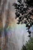 L'acqua cade in Yosemite Fotografia Stock