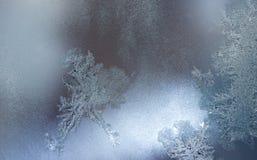 L'acqua congelata sulla finestra crea gli ornamenti come il dinosauro immagine stock libera da diritti