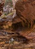 L'acqua della forcella sinistra nel parco nazionale di Zion riempie uno stagno e poi trabocca al seguente nel canyon della scanal fotografie stock