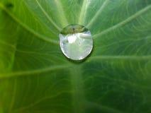 L'acqua della natura Fotografia Stock