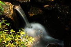 L'acqua di autunno Fotografia Stock Libera da Diritti