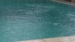 L'acqua di lusso della villa dello stagno della natura si appanna tropicale stock footage