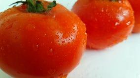 L'acqua di versamento matura dei pomodori ha rallentato la fucilazione bagnata video d archivio