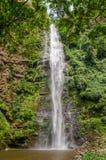 L'acqua famosa di Wli cade, il più alta cascata in Africa occidentale, circondata dalla foresta tropicale fertile, il Ghana Fotografia Stock Libera da Diritti