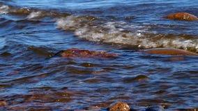 L'acqua lava le pietre sul fiume stock footage