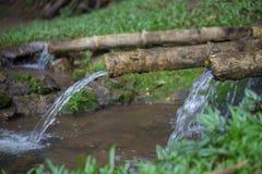 L'acqua naturale sta scorrendo dal tubo di bambù per l'agricoltura Fotografia Stock