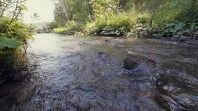 L'acqua nel bello fiume della montagna scorre intorno ad una grande pietra al rallentatore archivi video