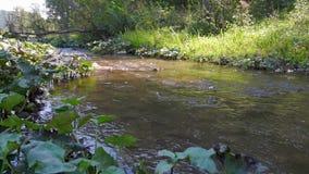 L'acqua nel bello fiume della montagna scorre intorno ad una grande pietra al rallentatore video d archivio