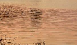 L'acqua si è increspata e spargendosi nel tramonto sul bacino idrico Tailandia di Wang Bon fotografie stock