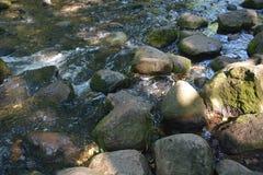 L'acqua veloce lapida Autumn Park Sunny Nature fotografia stock libera da diritti