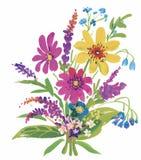 L'acquerello fiorisce nello stile classico su un fondo bianco Immagini Stock