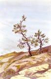 L'acquerello ha dipinto la vista con due pini vicino all'acqua Immagine Stock