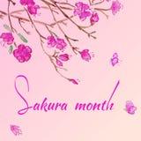 L'acquerello sakura porpora fiorisce l'invito Immagine Stock Libera da Diritti